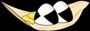 onigiri takuan